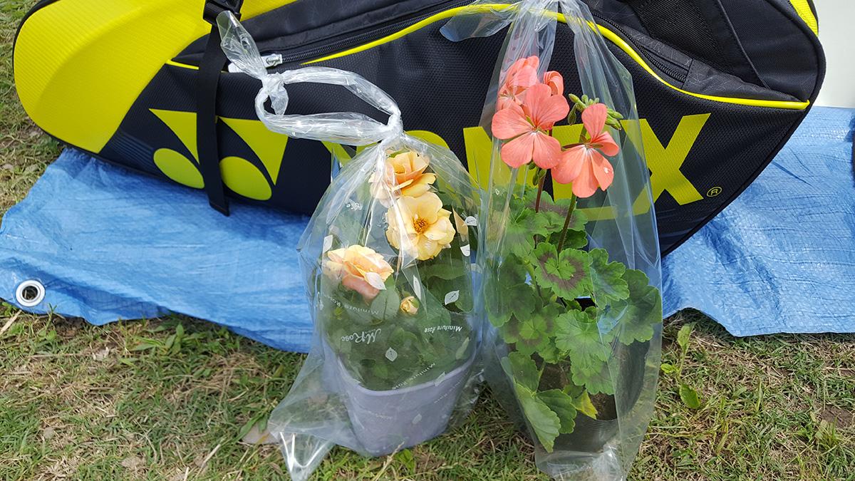 鴻巣市連盟杯ソフトテニス大会,パンジー杯,鴻巣市上谷総合公園テニスコート