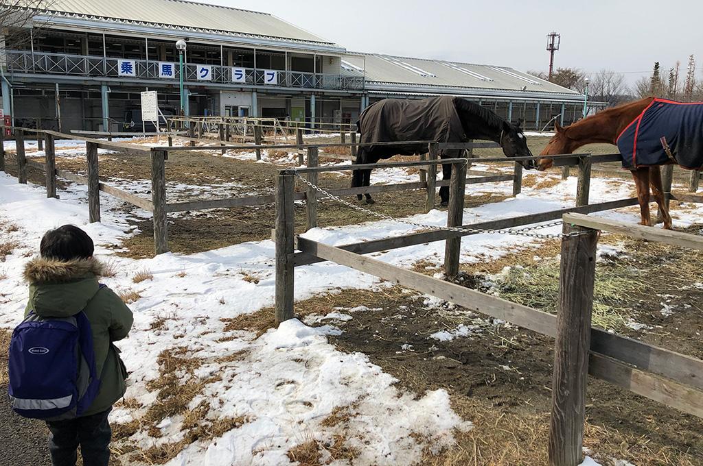 福島県,ルネサンス棚倉スポーツリゾート,乗馬クラブ
