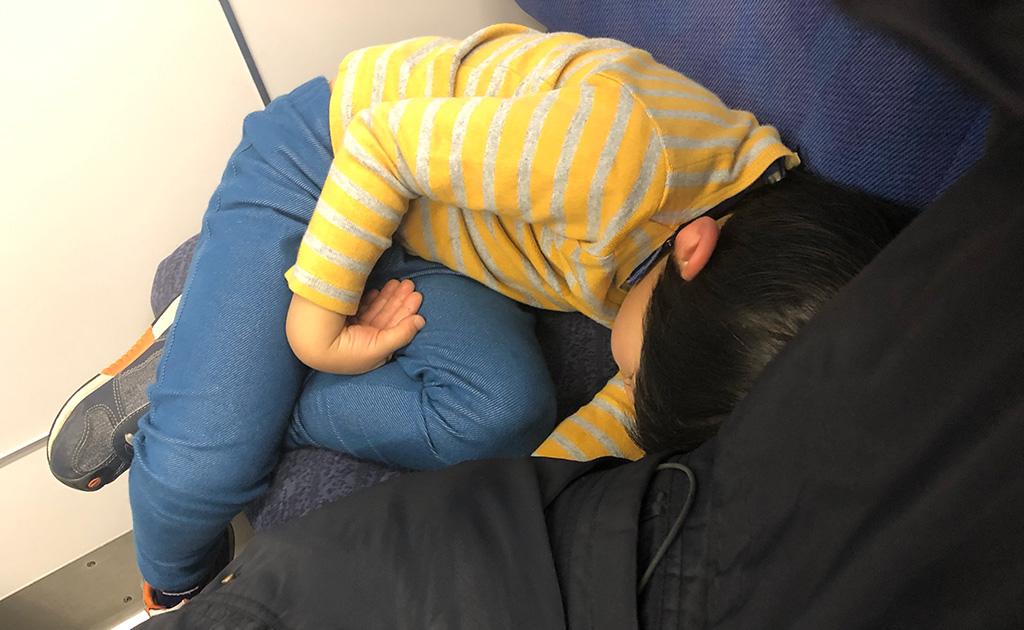 みちのくぶらり旅,福島,東北,はやぶさ新幹線