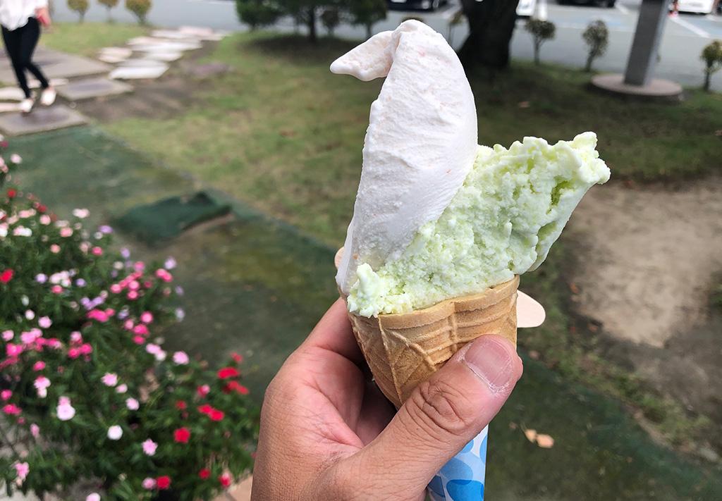 山形県寒河江市,チェリーランド,秘伝豆アイス