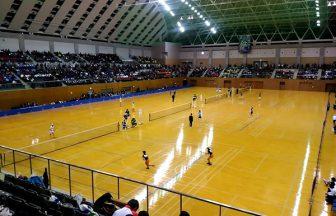 ソフトテニヌの王女様の小部屋,全日本高校選抜,プリ杯